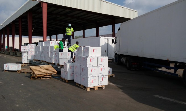 preparing-uld-pallets-for-flight-loading-for-unicef-vaccine